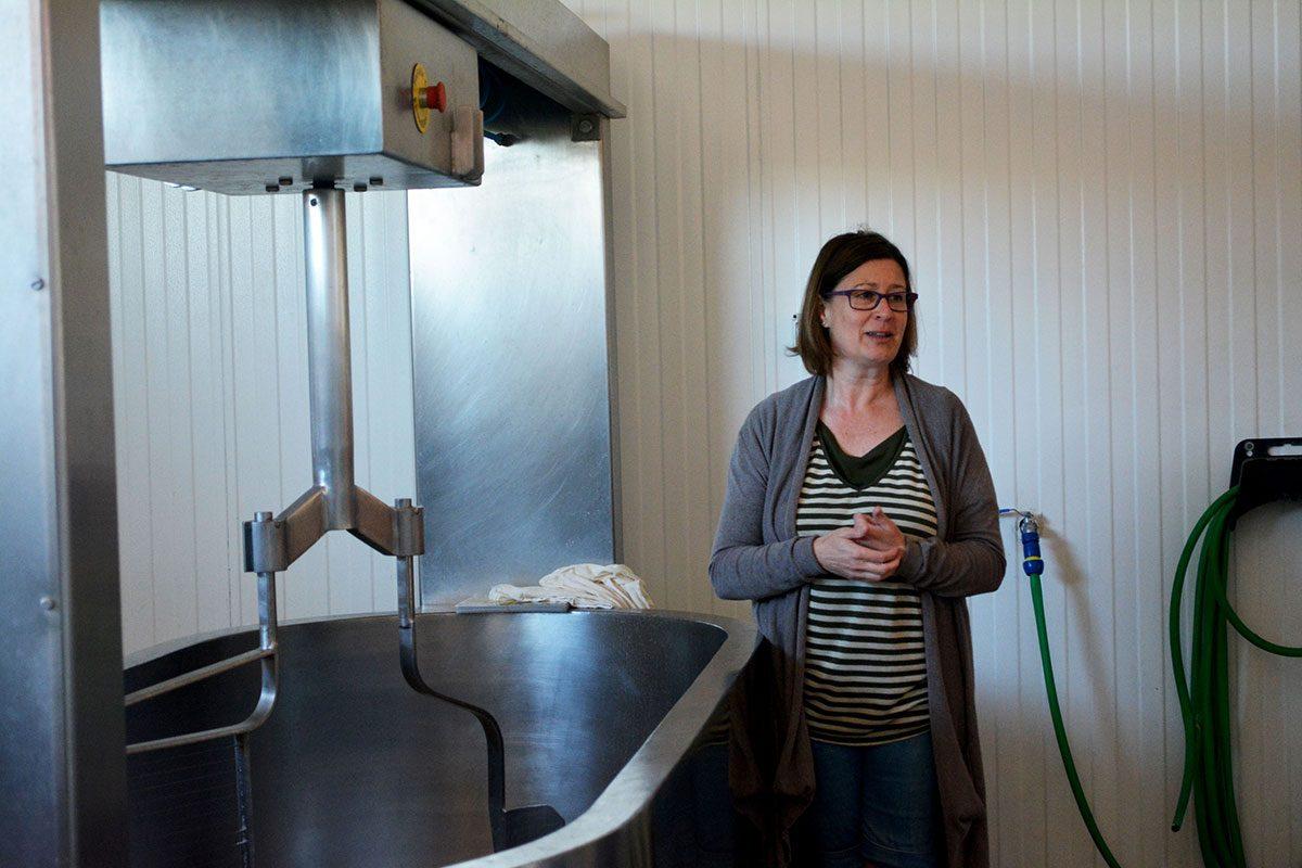 UNION DE MUJERES PLURIRREGIONAL - Curso de elaboración de quesos yogures y cuajada de oveja - Sacramenia