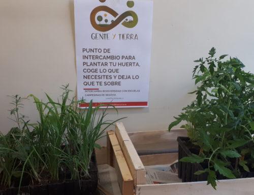 Punto de Intercambio de Planta para la Huerta en Escuelas Campesinas de Segovia