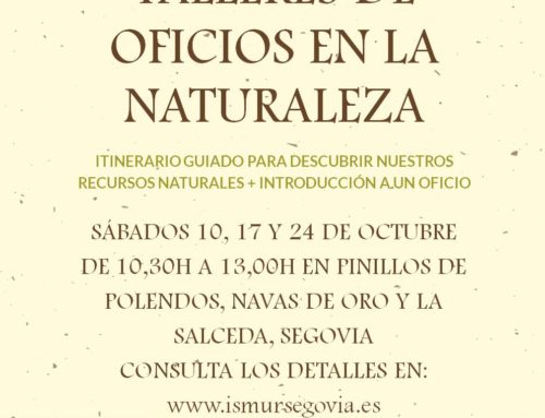 TALLERES DE OFICIOS EN LA NATURALEZA